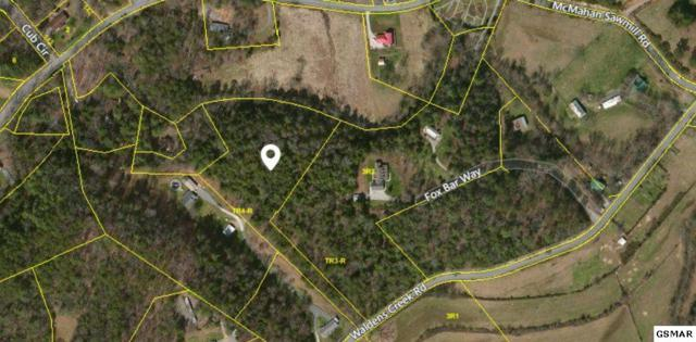 Waldens Creek Rd, Sevierville, TN 37876 (#211806) :: Billy Houston Group
