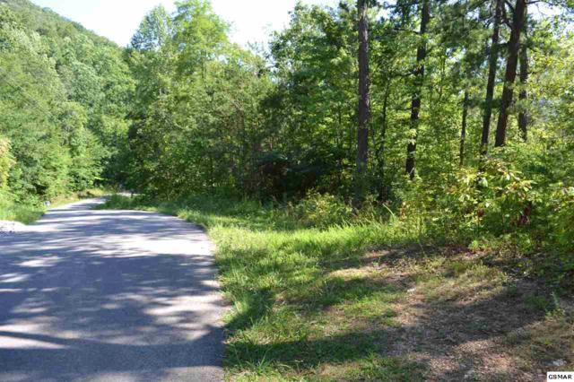 PO Lot 21 Clabo Mountain Way, Sevierville, TN 37862 (#211807) :: Billy Houston Group