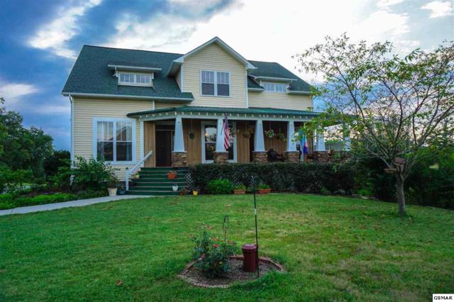 2060 Dickey School Rd, Dandridge, TN 37725 (#211815) :: Colonial Real Estate