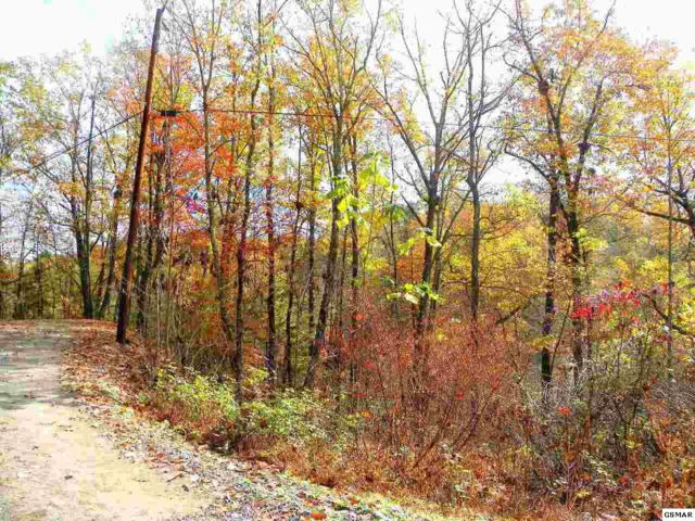 Lot 1 Ivy Way, Sevierville, TN 37876 (#211826) :: The Terrell Team