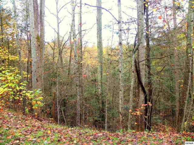 Lot#  8 Pinetree Way, Sevierville, TN 37862 (#211833) :: The Terrell Team