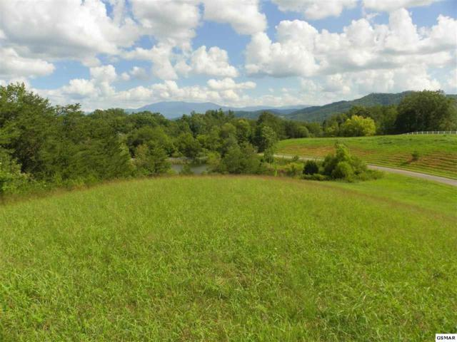 Charles James Way Lot 4-R, Pigeon Forge, TN 37863 (#211850) :: The Terrell Team