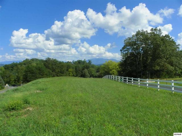 Charles James Way Lot 1-R, Pigeon Forge, TN 37863 (#211851) :: The Terrell Team