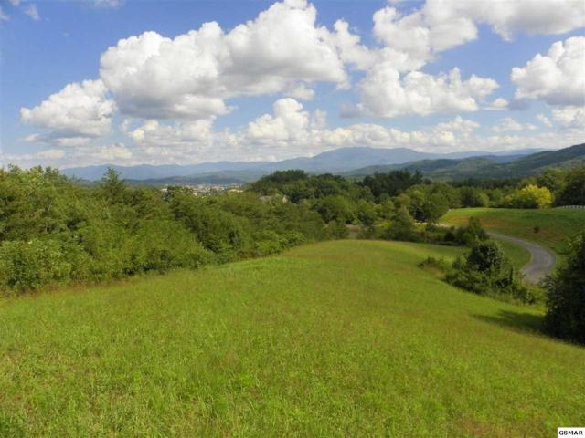 Charles James Way Lot 3-R, Pigeon Forge, TN 37863 (#211852) :: The Terrell Team