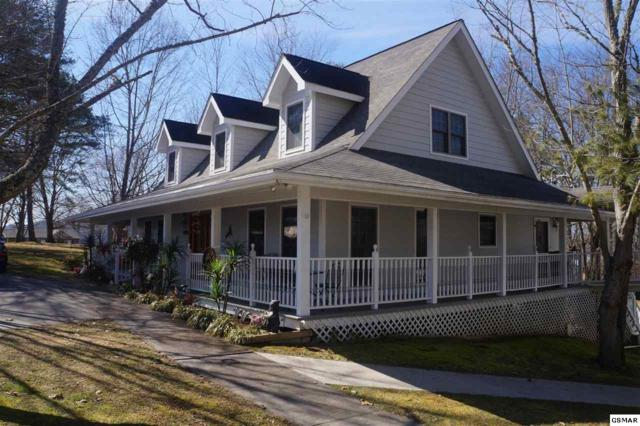 1628 Canal Lane, Dandridge, TN 37725 (#211892) :: Four Seasons Realty, Inc