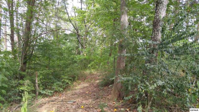 Lots 4 & 20 Vickwood Hills S/D, Pigeon Forge, TN 37863 (#211910) :: Four Seasons Realty, Inc