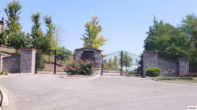 Lot 65 Grande Vista Drive, Sevierville, TN 37876 (#211964) :: Colonial Real Estate