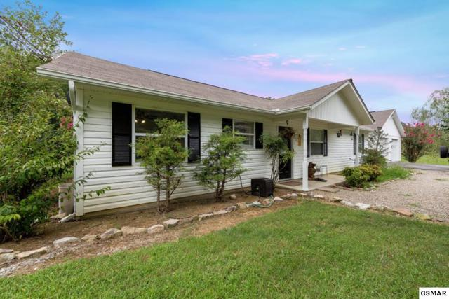 3829 Pleasant View Ln, Sevierville, TN 37862 (#211972) :: Colonial Real Estate