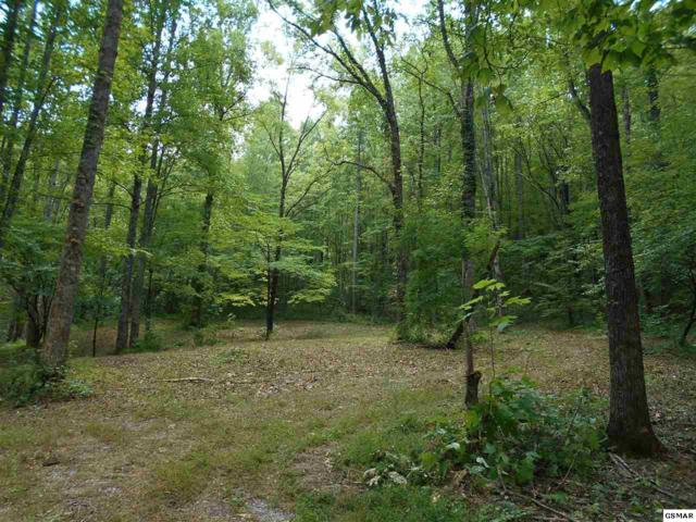 Lot 12 Cove Mountain Way, Sevierville, TN 37862 (#211983) :: Billy Houston Group