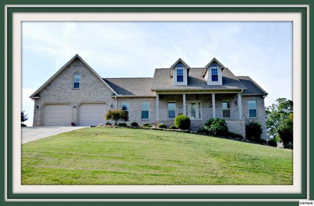 849 Pinnacle Dr., Dandridge, TN 37725 (#212012) :: Billy Houston Group