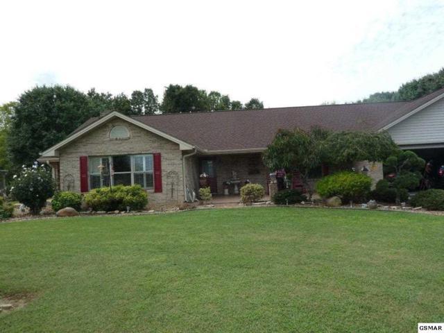 1864 Big Buck Ln, Sevierville, TN 37876 (#212029) :: The Terrell Team