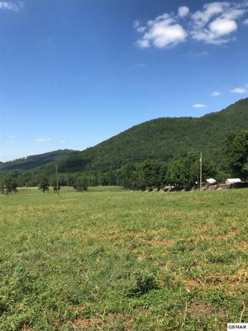 Lot #3-A Sugar Camp Circle, Sevierville, TN 37862 (#212114) :: Billy Houston Group