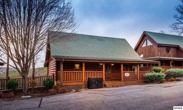 1949 Cougar Crossing Way Cuddle Inn, Sevierville, TN 37876 (#212191) :: Colonial Real Estate