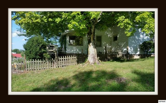 4201 Wears Valley Rd, Sevierville, TN 37862 (#212224) :: The Terrell Team