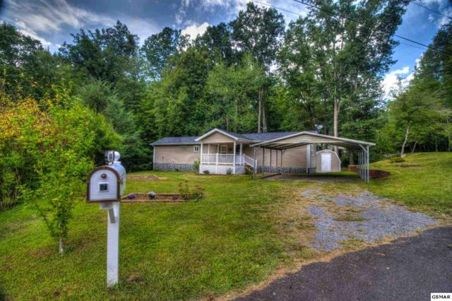 1403 Lin Creek Rd, Sevierville, TN 37876 (#212226) :: Colonial Real Estate
