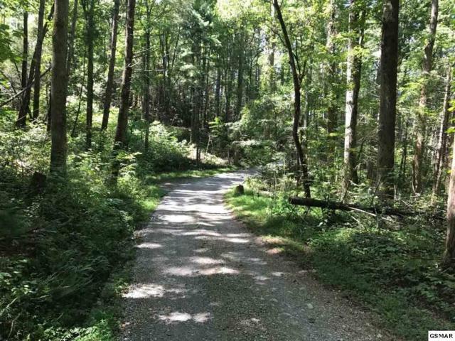 lot 4-R1, 4R-2 Mountain Breeze Drive, Townsend, TN 37882 (#212241) :: Billy Houston Group