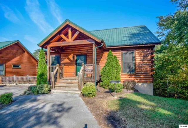 3210 Steeple Way Mystic Mountain, Pigeon Forge, TN 37863 (#212270) :: Billy Houston Group