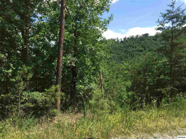 Lot #2-A Rising Fawn, Sevierville, TN 37862 (#212390) :: Billy Houston Group