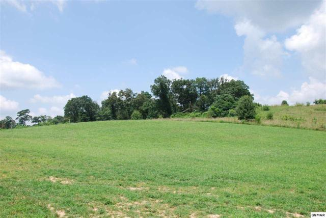 Lot 35 English Meadows Drive, White Pine, TN 37890 (#212427) :: Billy Houston Group