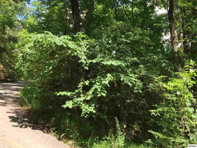 Lot #4-A Rising Fawn, Sevierville, TN 37862 (#212442) :: Billy Houston Group