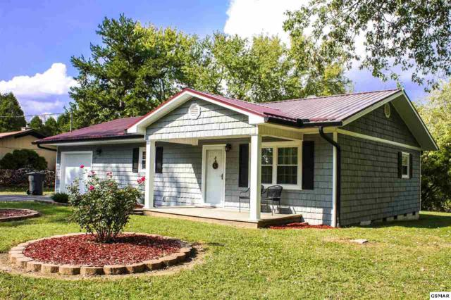 121 Indiana Avenue, Pigeon Forge, TN 37863 (#212444) :: The Terrell Team