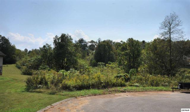 Lot 14 Haley Woods, Kodak, TN 37764 (#212451) :: Colonial Real Estate