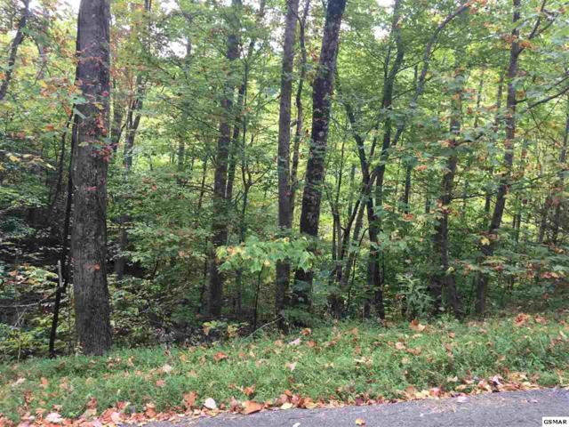 Lot 1129 Beach Front Dr., Sevierville, TN 37876 (#212466) :: Billy Houston Group