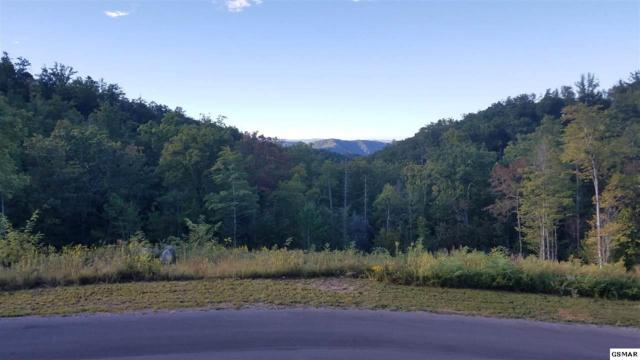Lot 118 Summit Trails Dr, Sevierville, TN 37862 (#212477) :: Colonial Real Estate