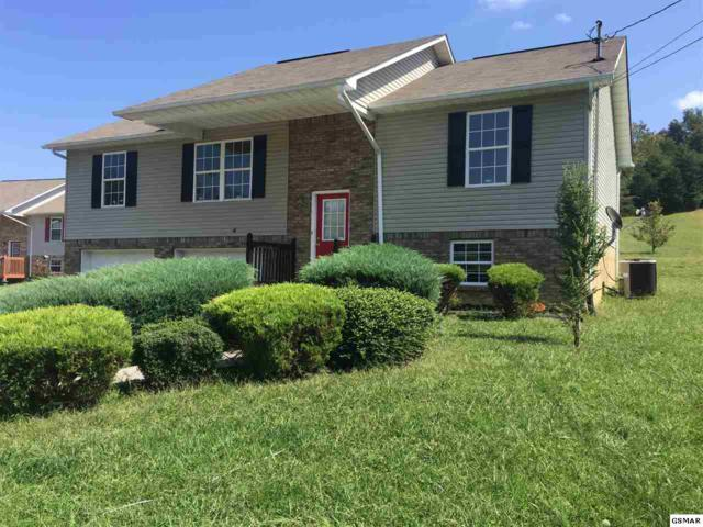 312 Meadow Creek Dr, Seymour, TN 37865 (#212478) :: Colonial Real Estate