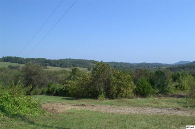 718 E Dumplin Valley Rd., Kodak, TN 37764 (#212498) :: Colonial Real Estate