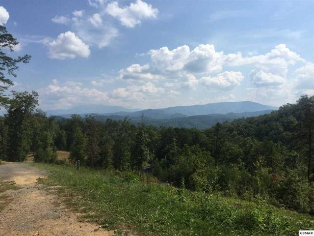 Lot 58 Laughing Pines Lane, Sevierville, TN 37876 (#212515) :: Billy Houston Group