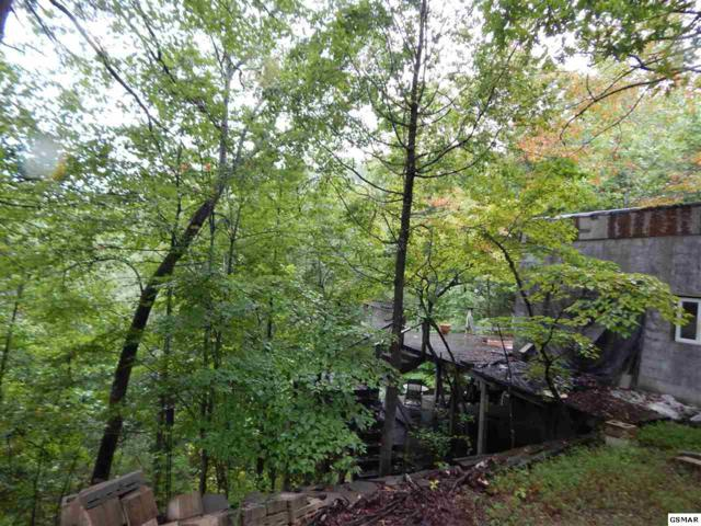 749 Llyod Huskey Rd, Pigeon Forge, TN 37863 (#212528) :: Billy Houston Group