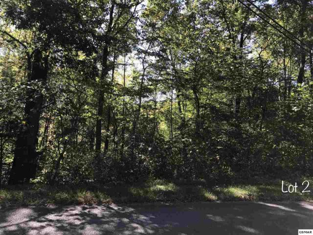 Greasy Cove Rd, Cosby, TN 37722 (#212538) :: Billy Houston Group