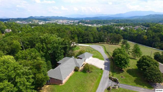 1317 Americana Dr, Pigeon Forge, TN 37863 (#212560) :: The Terrell Team