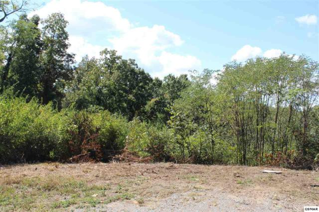 Lot #25 Panorama, Sevierville, TN 37862 (#212569) :: Billy Houston Group