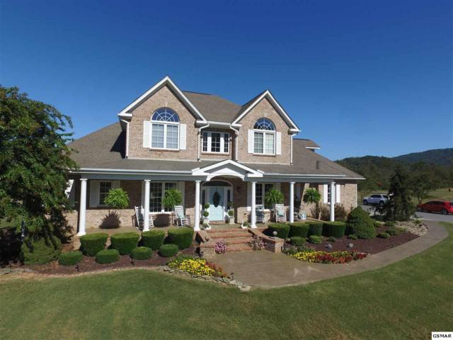 134 Orchard Rd, Cosby, TN 37722 (#212607) :: Colonial Real Estate