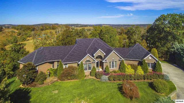533 Lakebend Lane, Dandridge, TN 37725 (#212617) :: The Terrell Team