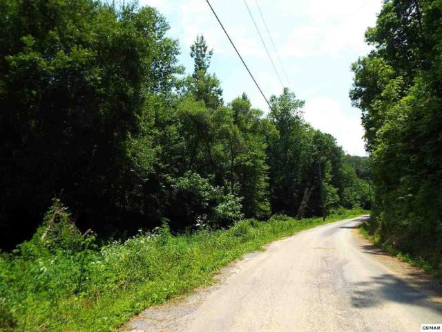 Parcel 022.17 Licking Spring Way, Sevierville, TN 37876 (#212628) :: Billy Houston Group