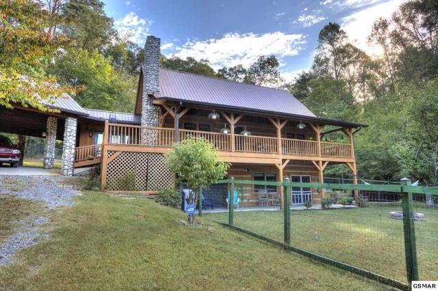 1541 Covington Rd, Dandridge, TN 37725 (#212645) :: The Terrell Team