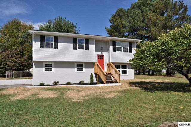 348 Hidden Valley Circle, Seymour, TN 37865 (#212652) :: Colonial Real Estate