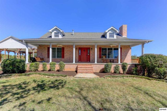 1754 Muddy Creek Rd, Dandridge, TN 37725 (#212656) :: Colonial Real Estate
