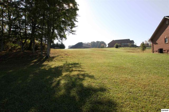 Lot 51 Landmark Blvd, Sevierville, TN 37862 (#212680) :: The Terrell Team