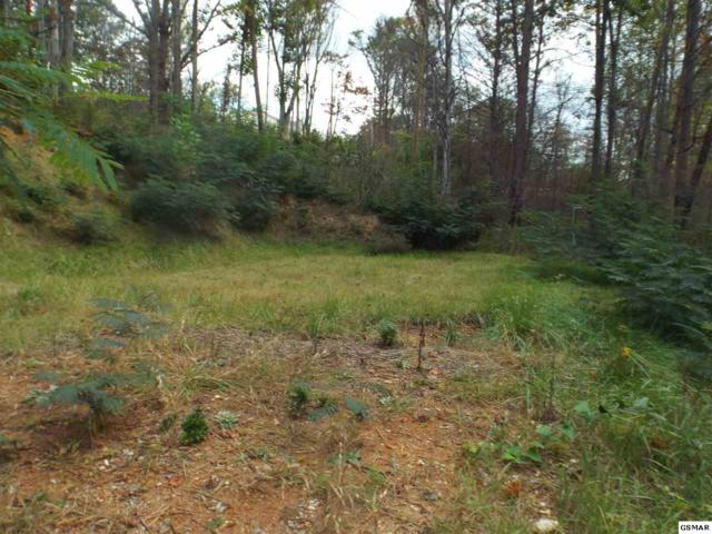 523 Ridge Rd, Gatlinburg, TN 37738 (#212695) :: Colonial Real Estate