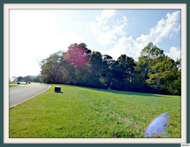 Lot 6 Hilltop View Dr., Dandridge, TN 37725 (#212702) :: SMOKY's Real Estate LLC