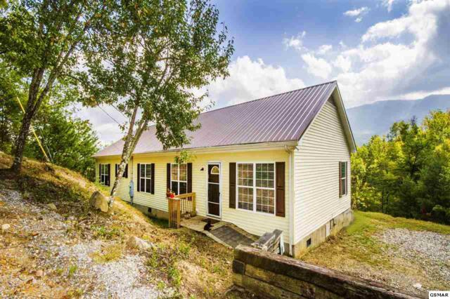 352 Costner Rd, Cosby, TN 37722 (#212705) :: SMOKY's Real Estate LLC