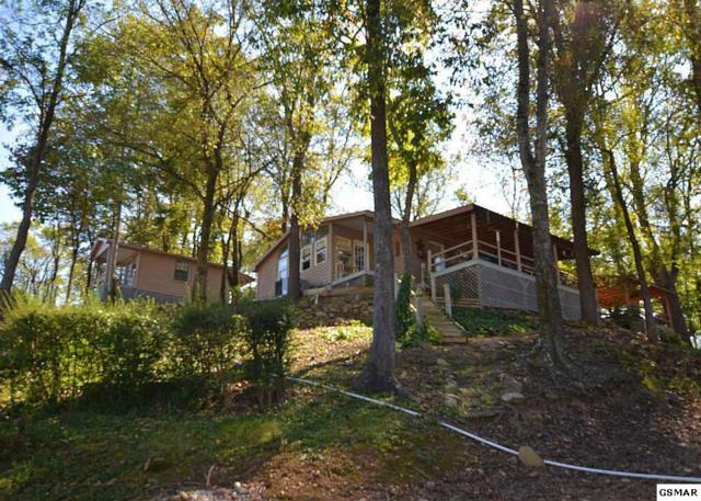 3358 Cosby Hwy, Cosby, TN 37722 (#212710) :: Colonial Real Estate