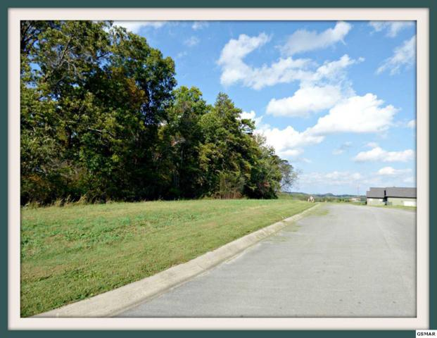 Lot 8 Hilltop View Dr., Dandridge, TN 37725 (#212711) :: SMOKY's Real Estate LLC