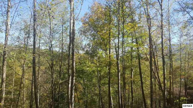 Lots 40&45 Birdie Ln, Gatlinburg, TN 37738 (#212720) :: SMOKY's Real Estate LLC