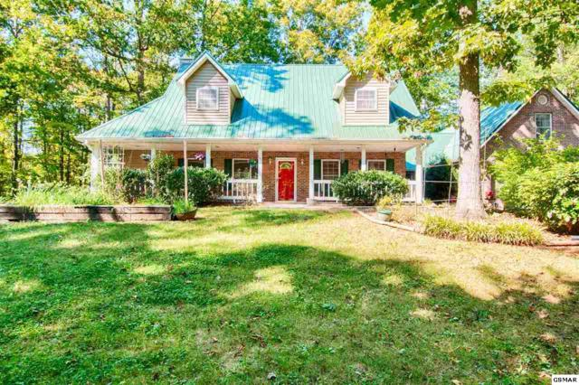 157 Rabbit Run Way, Dandridge, TN 37725 (#212723) :: SMOKY's Real Estate LLC