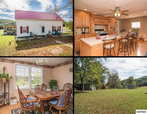 1113 Holbert Cemetery Road, Sevierville, TN 37876 (#212742) :: Colonial Real Estate